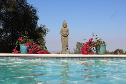 Silent Meditation Retreat Center in Northern California, accessible from San Francisco, Sacramento and Los Angeles Buddha photo